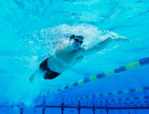 Free Swimming Programs: Free Training Sets and Sessions